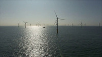 De Backer wil subsidies offshore wind intrekken